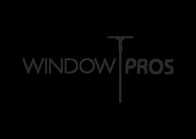 windowPros_1