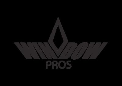 windowPros_13