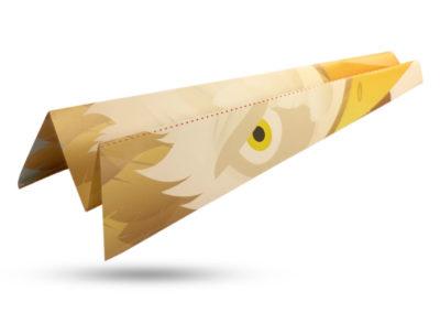 airplane_displayed_eagle