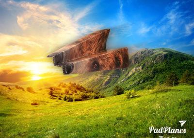 padofplanes_bear